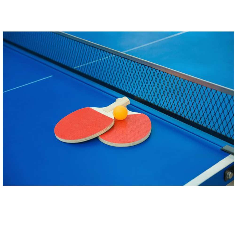 Table Tennis Racket'