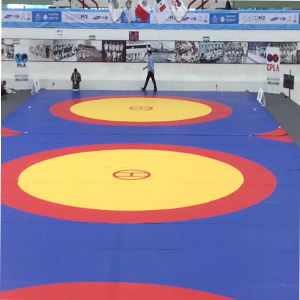 Wrestling Competition Mats'